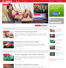 ST Janggu - Drupal news theme from Symphony Themes