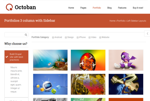 ST Octoban Portfolio Options
