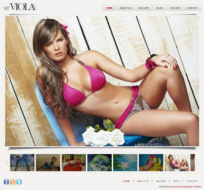 5 best Drupal gallery themes from Symphony Themes | Drupal Blog ...
